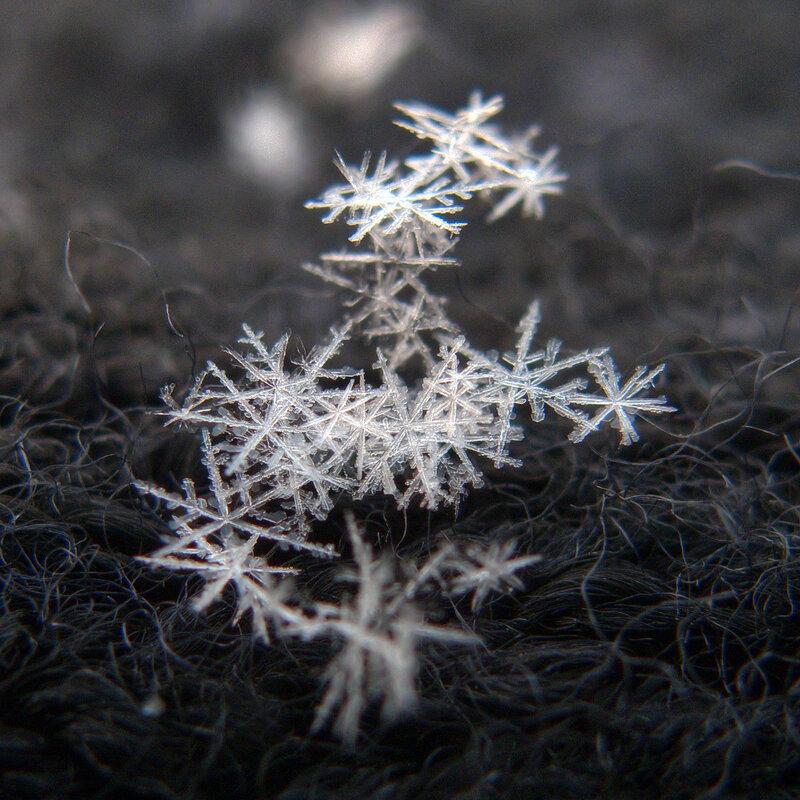 Горсть снега