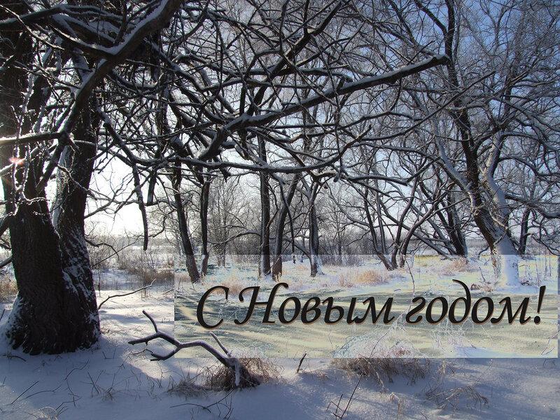 https://img-fotki.yandex.ru/get/15549/4400019.30/0_b9b37_53dfa0bf_XL.jpg