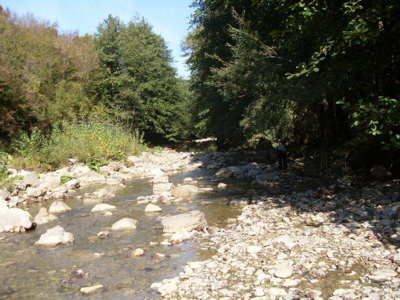 11  октября 2008, под Горячим Ключом, река (61).JPG