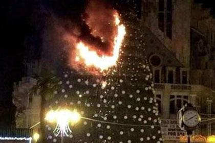 На глазах у мэра Батуми загорелась главная елка города