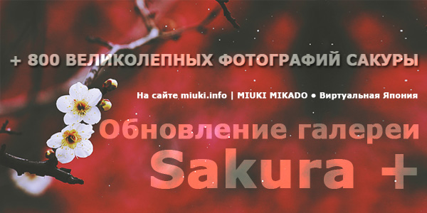 MIUKI MIKADO • Виртуальная Япония / Сакура