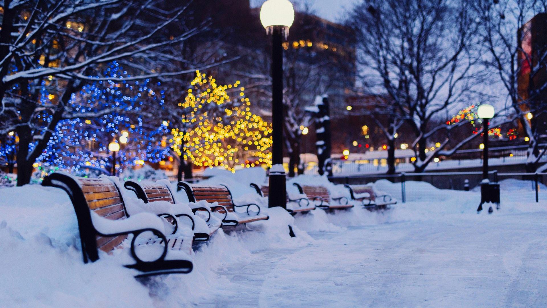 красивая зима природа обои на рабочий стол