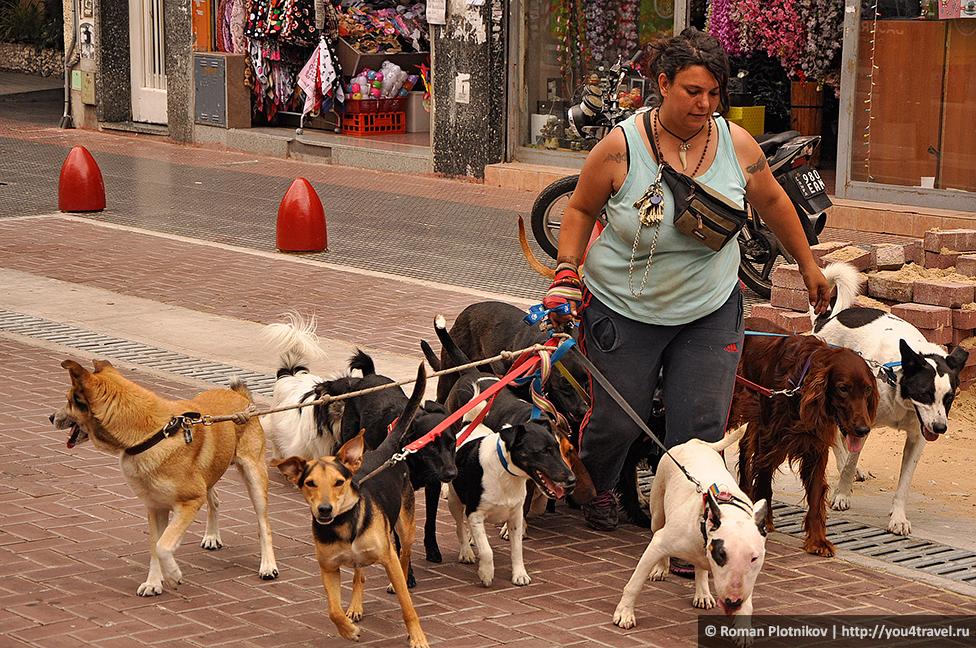 0 4634a3 35dcc698 orig День 420 434. Китайский квартал в Буэнос Айресе и гастрономическое блаженство