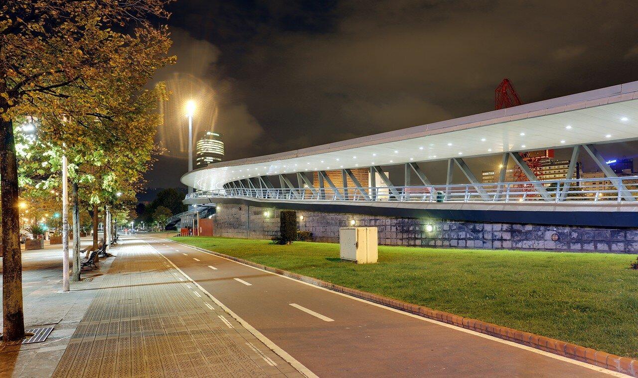 Бильбао. Моста Эускалдуна (Puente Euskalduna,  Euskalduna Zubia)