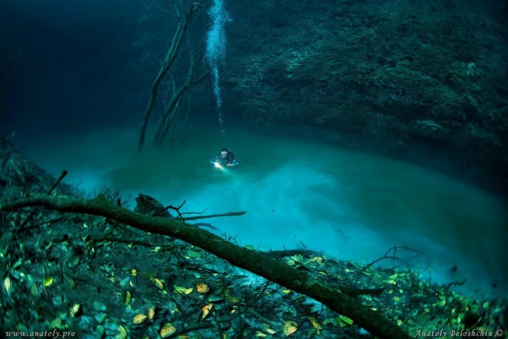 Анатолий Белощин Морская вода, насыщенная сероводородом, намного тяжелее обычной. Засчет своей тяже