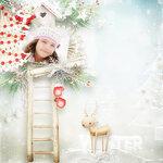 00_Snowy_Holidays_Palvinka_x14.jpg