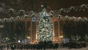 Жителям Кишинева подарили новогоднюю елку
