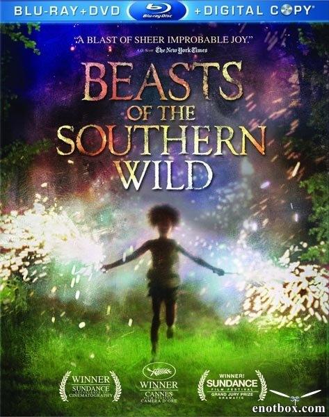 Звери дикого Юга / Beasts of the Southern Wild (2012/BDRip/HDRip)