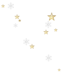 sd_woodland-winter-star-scatter.png