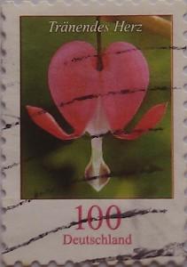цветочек 100
