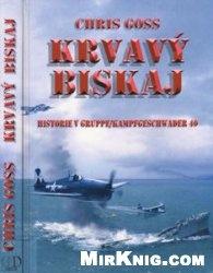 Krvavy Biskaj: Historie V Gruppe/Kampfgeschwader 40