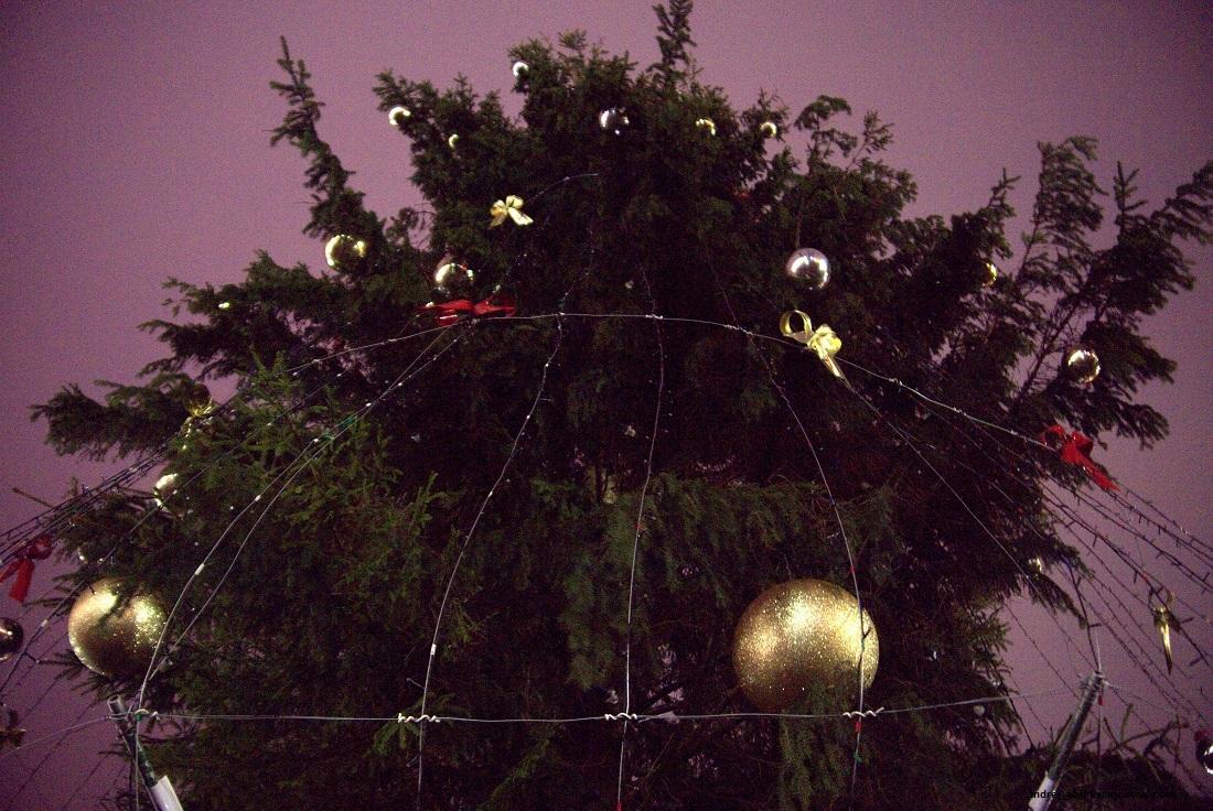 Новогодняя ёлка, площадь строителей, Новополоцк.