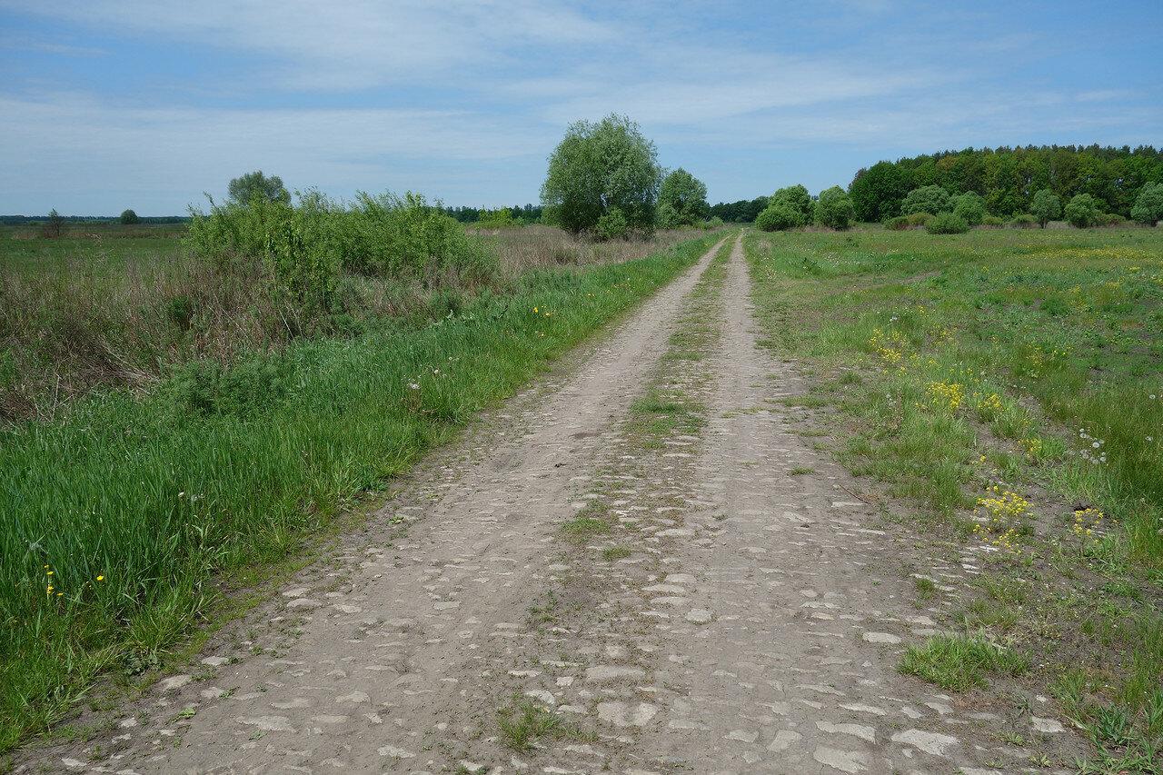 старая булыжная мостовая дорога