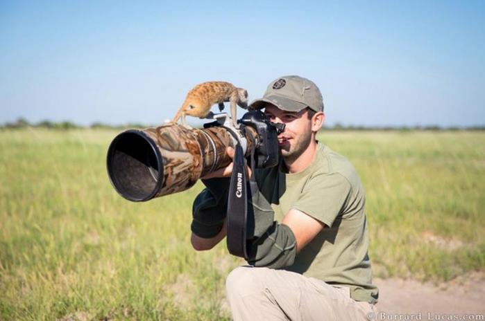 На что готовы смелые фотографы ради хорошего кадра 0 146ada 1ab723fa orig