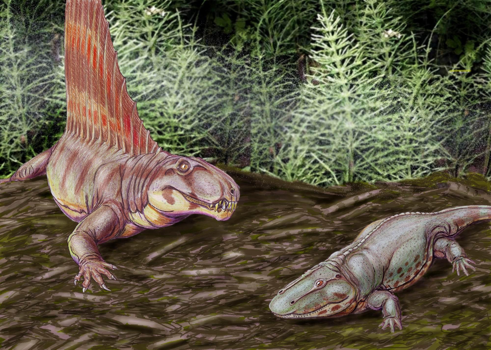 6. Десматозух Desmatosuchus — это вымерший род архозавров, которые включают современных птиц и кроко