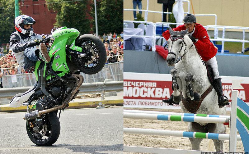 Лошади.17..jpg