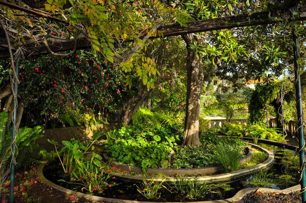 Madeira-Garten-(14).jpg