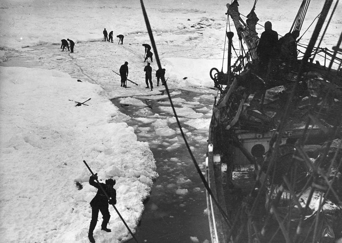 7. Вскоре судно столкнулось с неожиданно высокой плотностью льдин. После более чем двух месяцев борь