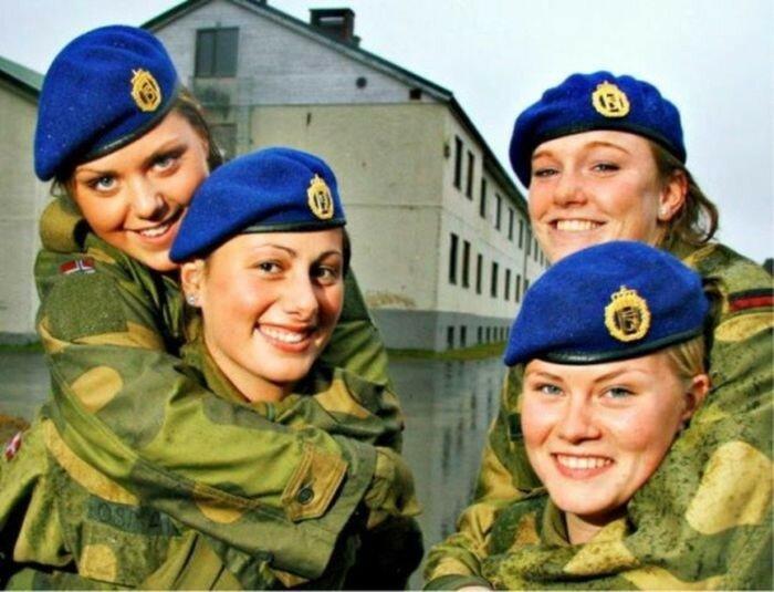 Norges Forsvar