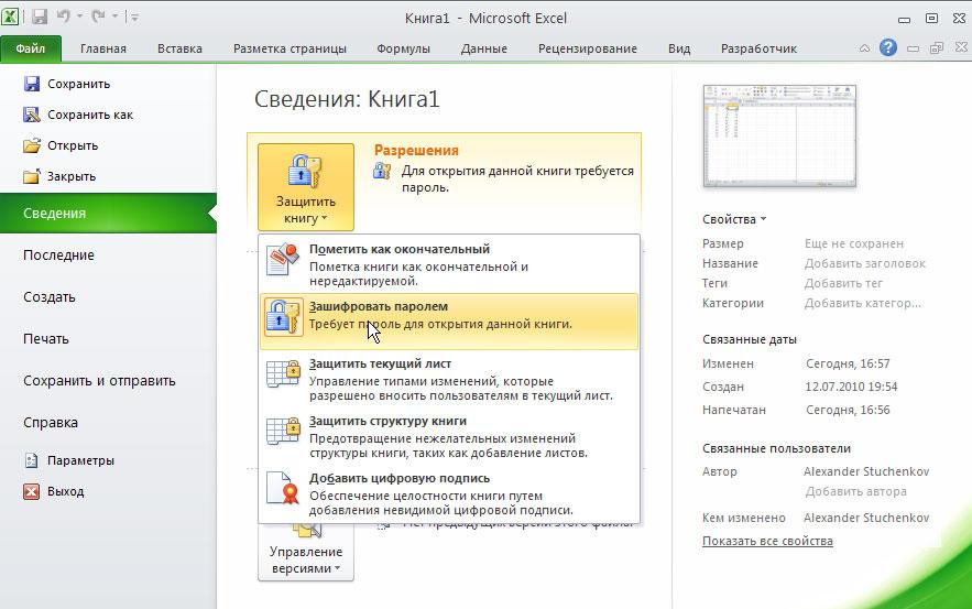 Рис. 1. Раздел Сведения на вкладке Файл и инструменты задания/снятия пароля