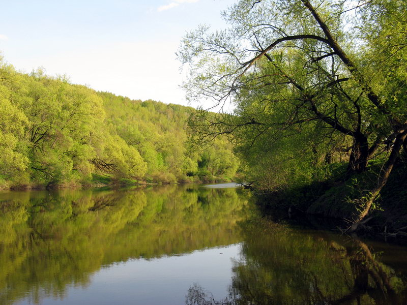 Сплавы по рекам Центральной России
