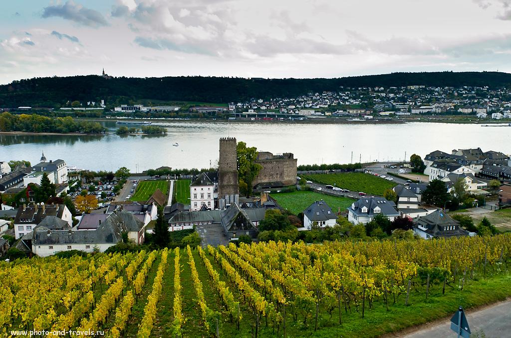 18. Виноградники в городе Rüdesheim am Rhein