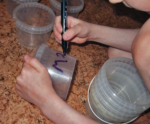 Опыт с микроволновкой