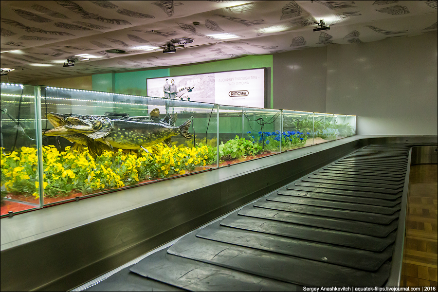 Аэропорт Хельсинки / Helsinki Airport