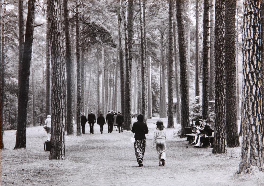 1970. В лесопарке