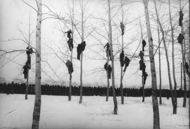Микола Гнисюк «Грачи прилетели», 1964.jpg