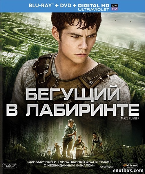 Бегущий в лабиринте / The Maze Runner (2014/BD-Remux/BDRip/HDRip)