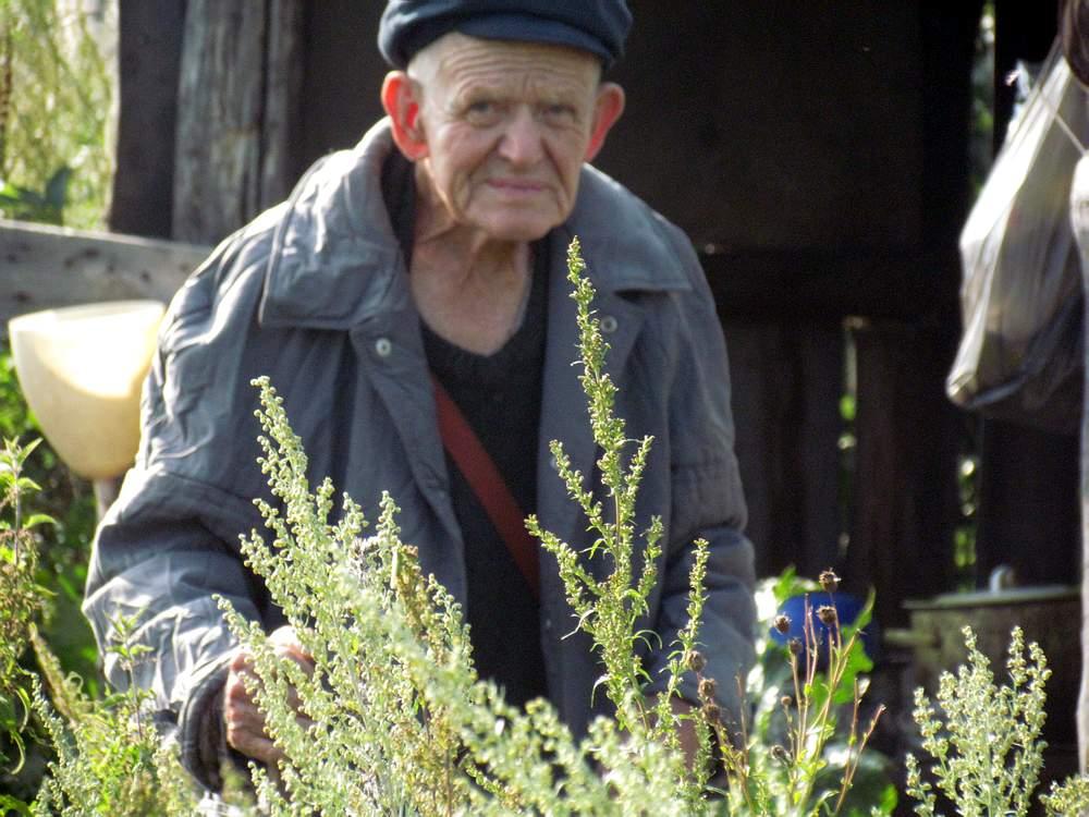 Гордеевы луга, Сталинский хутор