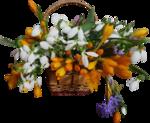 весенние цветы (20).png