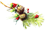 ldavi-wintermouestocking-pineandholly1.png