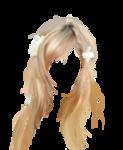 hair4.png