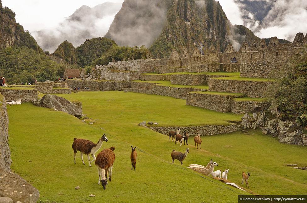0 168de4 f192026a orig Как добраться и как купить билеты в Мачу Пикчу в Перу