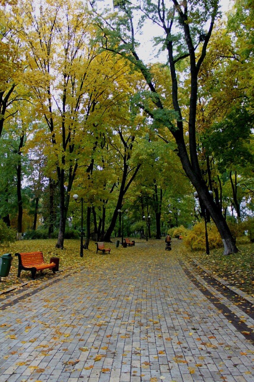 Аллея Мариинского парка осенью