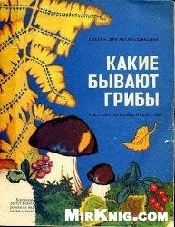 Книга Какие бывают грибы