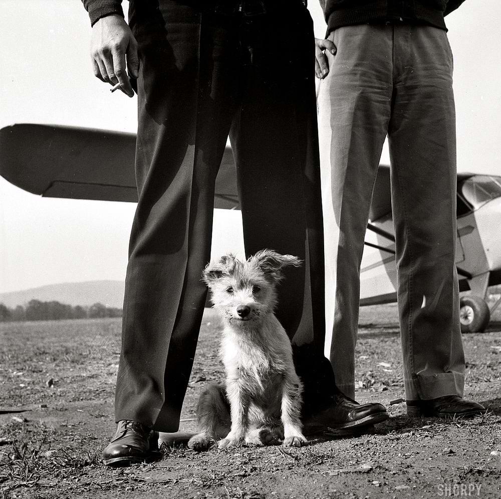 Самолеты и пилоты начала 20-го века на снимках американских фотографов (54)