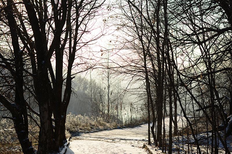 парк почти зима2
