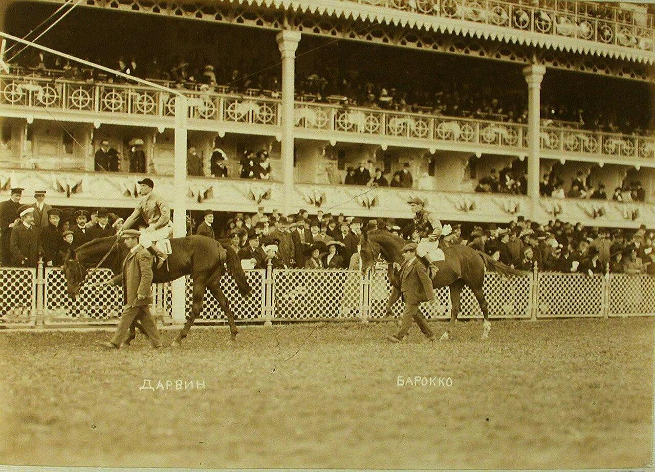 05. Участники скачек на приз «Мидл-Парк-Плет» на лошадях «Дарвин» и «Барокко»