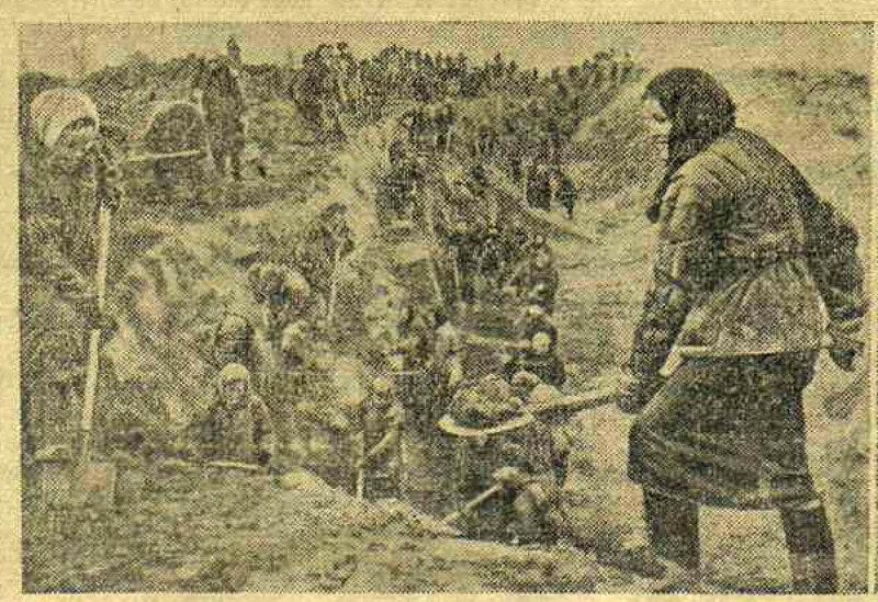 «Известия», 22 ноября 1941 года, битва за Москву, оборона Москвы, как русские немцев били, потери немцев на Восточном фронте