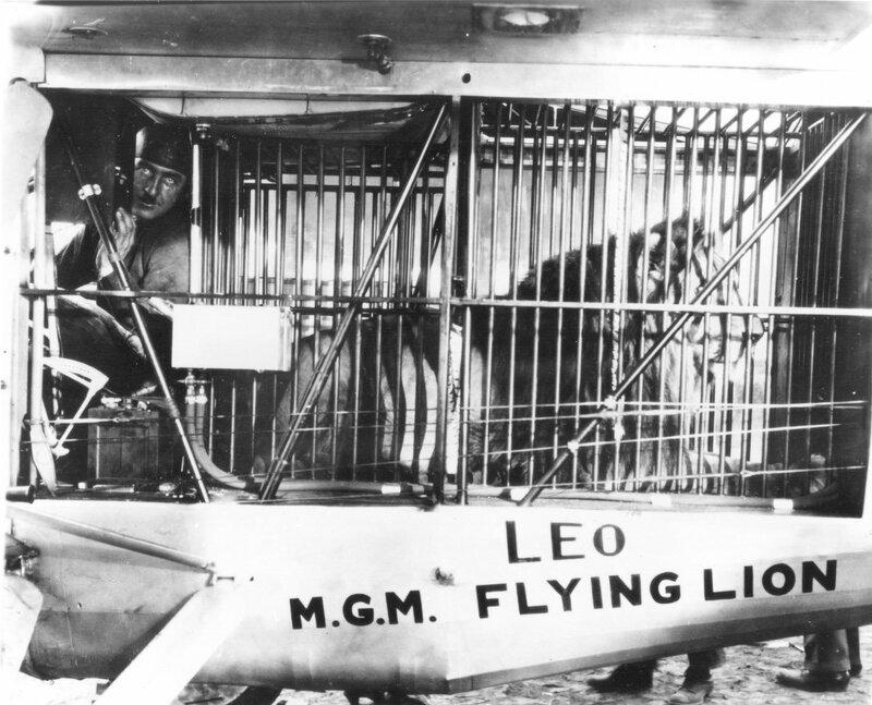 MGM-Lion-9.jpg