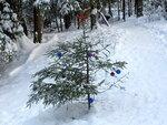 Новогодняя ёлка в Подушкинском лесу