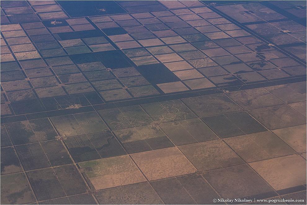 4. Любимейшие аргентинцами квадраты можно лицезреть как практически во всех городах, так и за городо
