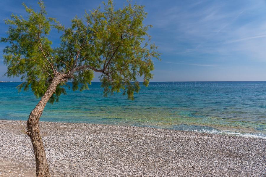 Пляж Кутелос | Koutelos beach