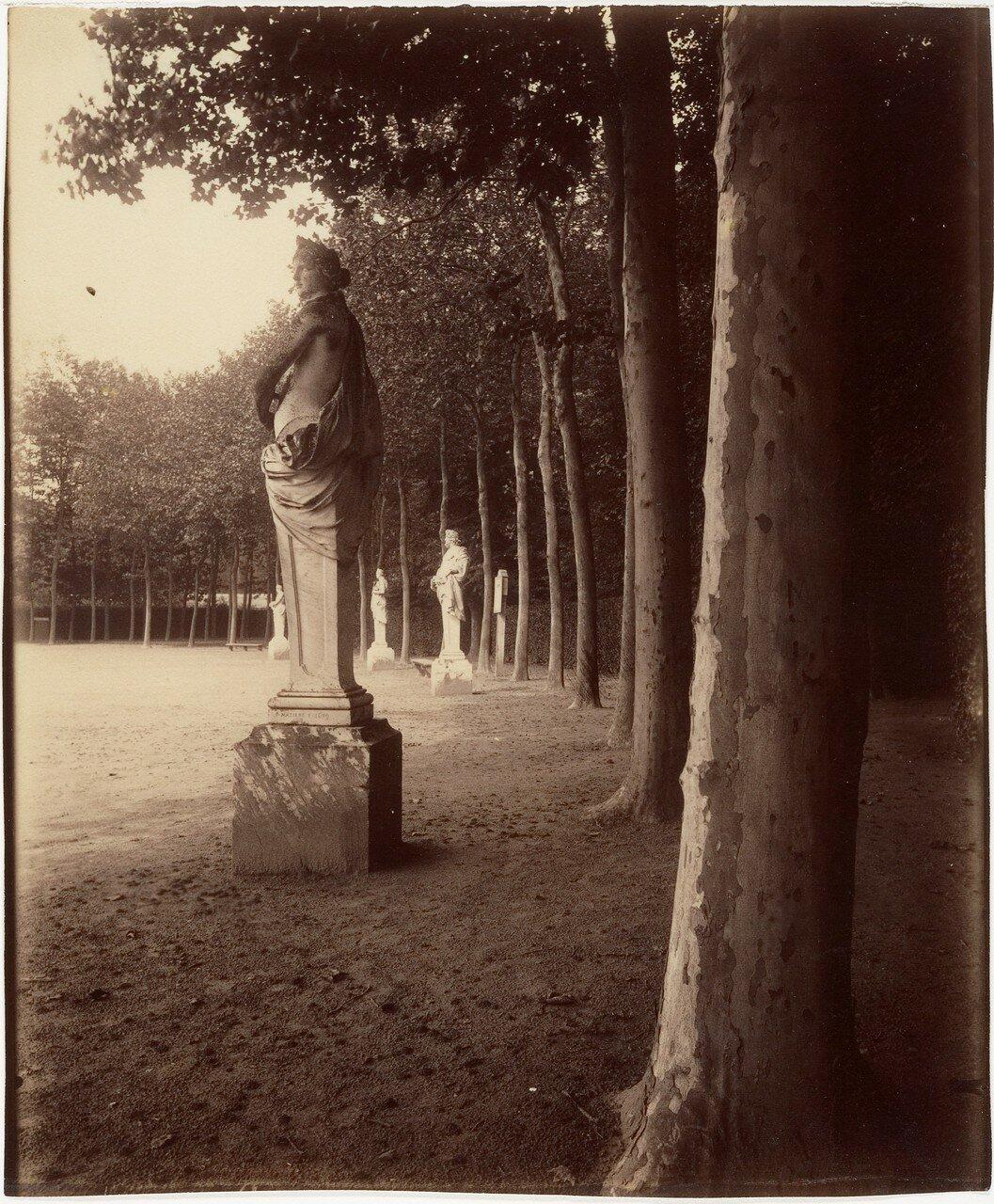 1902. Версаль. Парк