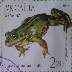2011 N1140-1144 (b93) блок Фауна Земноводные Жабы ставкова жаба 2.20