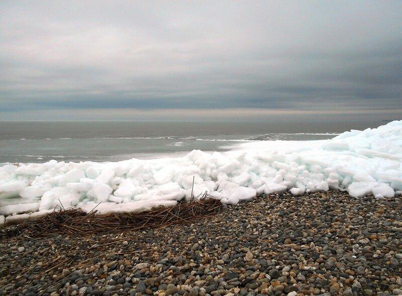 На зимнем берегу ... DSCN3292.JPG