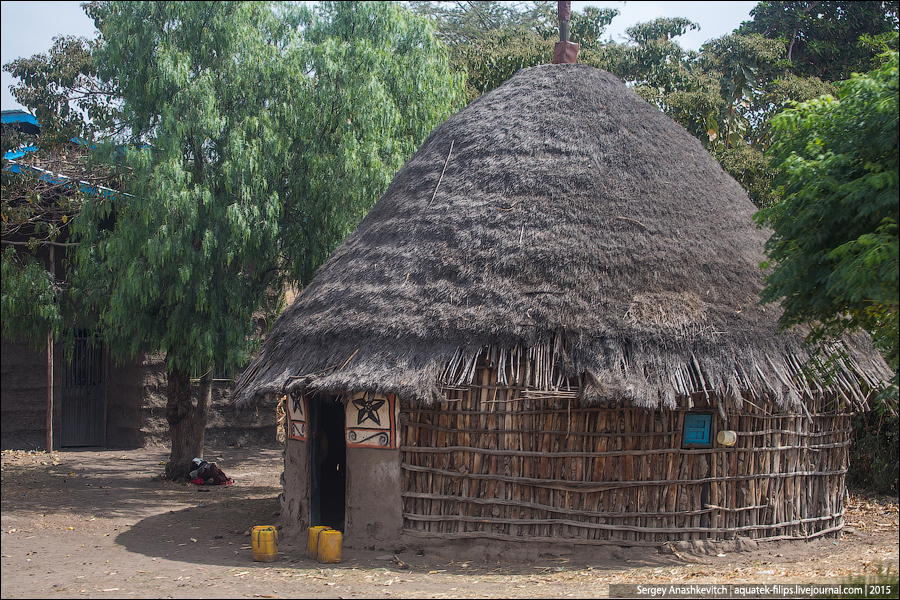 Дома из говна и палок